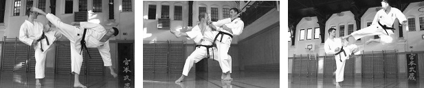 karate_training2
